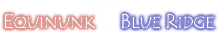 Sleepaway camps Equinunk and Blue Ridge
